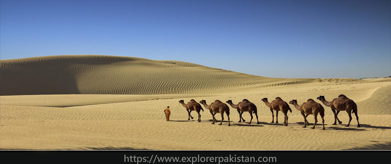 gwadar Desert