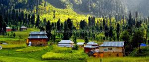 Bungus Valley