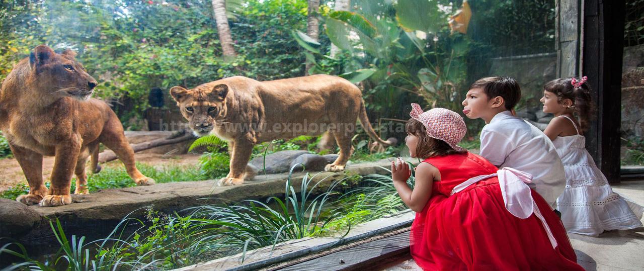 Lahore Zoo