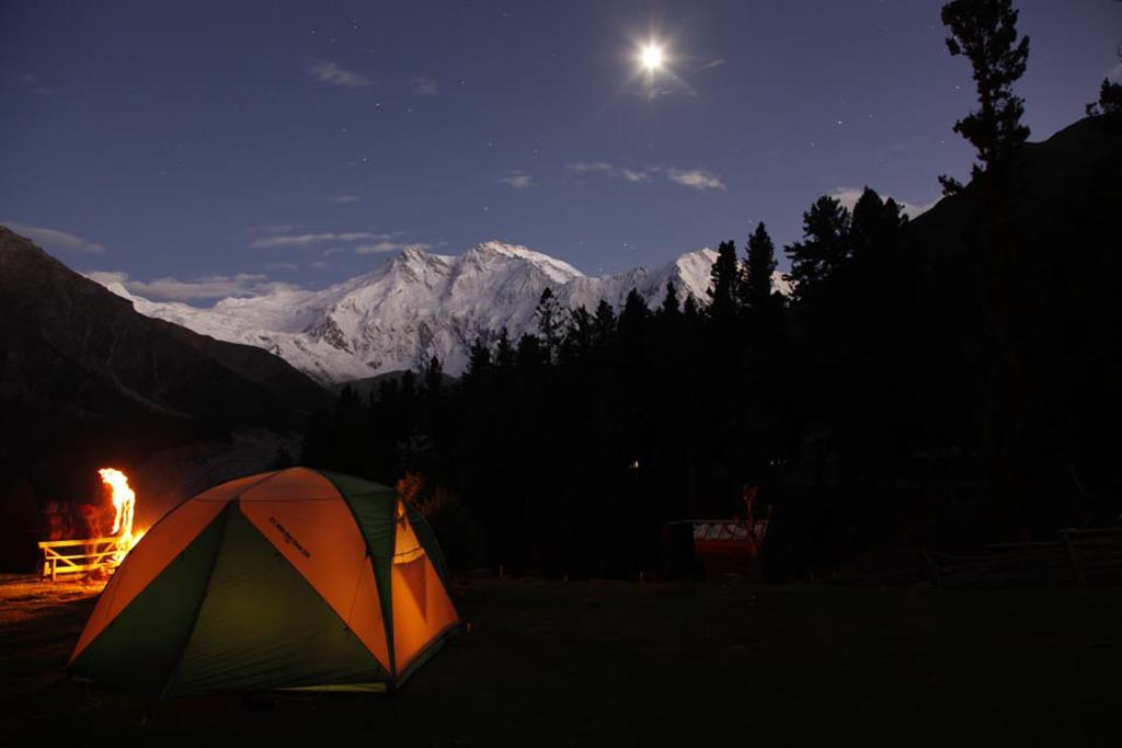 fairy meadows at night